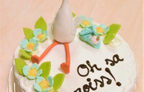 Tort poisslapse sünni puhuks | Erikaunistusega tordid | Cafe Boulevard
